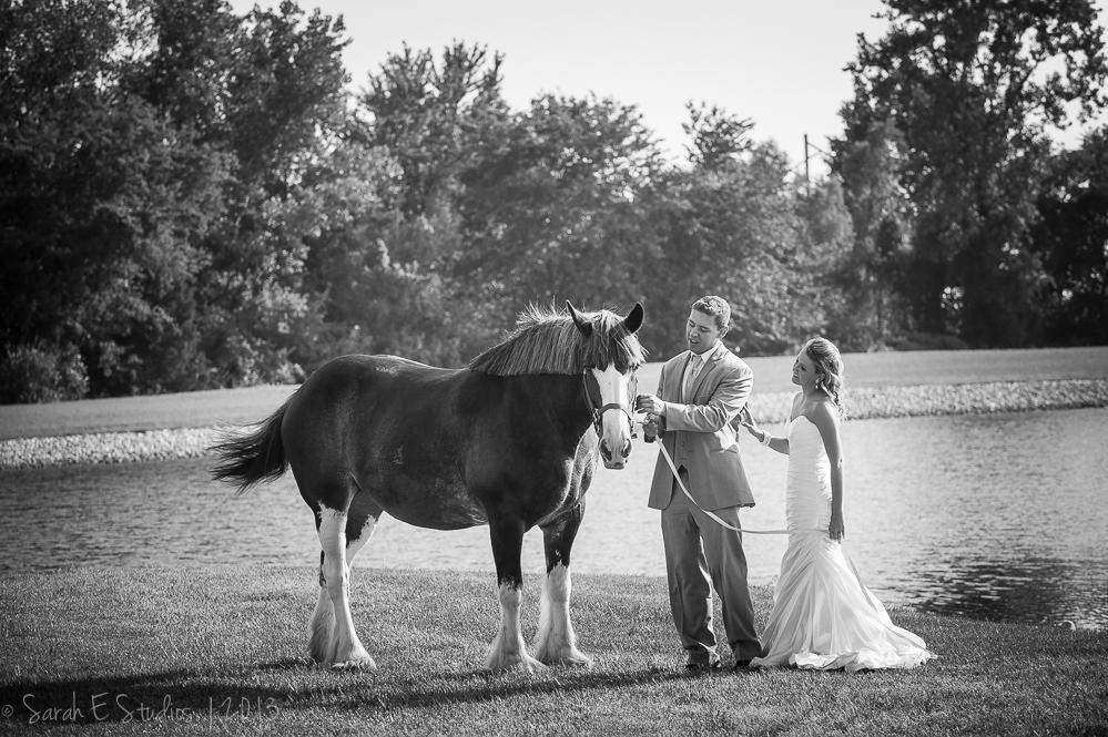 Melissa & Angelo's Wedding. Photos by Sarah E Studios - 27